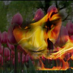 artisticselfie freetoedit colorful flower