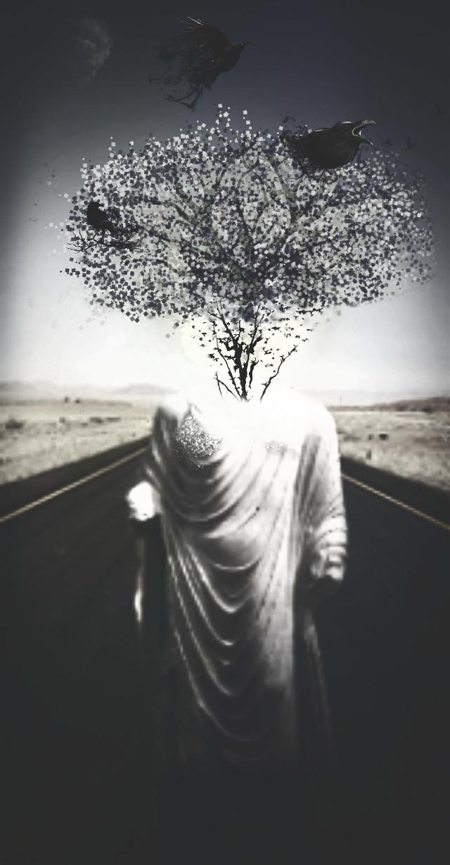 #gdheadless#black#white#Dispersion#effect#tree#surreal#afterdark#freetoedit#cute#splash