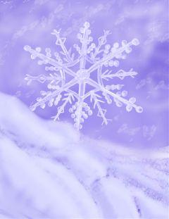 wdpsnowflake snow