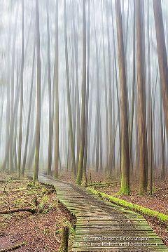 photography nature travel pierreleclercphotography landscape
