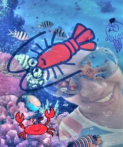 silly fun underwater