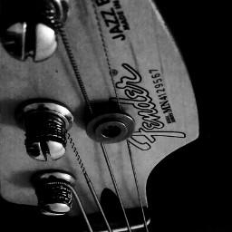 wppjazz music electricguitar bassguitar electricbass